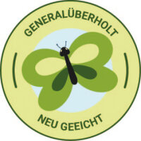 Gaszähler G6 Zweistutzen DN25 | generalüberholt